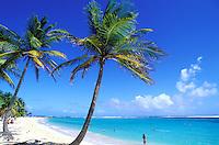 France - Département d'Outre mer de la Guadeloupe (DOM) - Marie Galante - Capesterre - La plage de la Feuillière