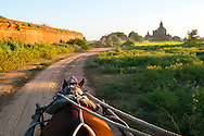 Traveling by horse-drawn carriage around the medieval temple complex in Bagan, Myanmar