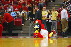 18 January 2009: Fredbird, the St. Louis Cardinals mascot, arrives at Redbird Arena with the Cardinals Caravan and steels the show at halftime. Fredbird is watching the amazing Illinois State Redline Dancers.  The Illinois State University Redbirds top the Missouri State Bears 68-56 on Doug Collins Court inside Redbird Arena on the campus of Illinois State University in Normal Illinois