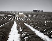 L'hiver sur un plateau