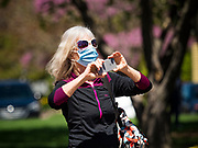 """03 MAY 2020 - PELLA, IOWA: A person wearing a mask to prevent the spread of Coronavirus takes pictures with a smart phone in downtown Pella, Iowa. Pella is a small community in central Iowa. The town's economy is driven by tourism and the Tulip Festival, the largest tourist event of the year, has already by canceled for 2020 because of fears that the festival could become a COVID-19 (Coronavirus/SARS-CoV-2) """"Super Spreader"""". The Governor of Iowa reopened 77 of Iowa's 99 counties. The counties that were reopened have reported low incidences of Coronavirus. Marion County, where Pella is located, has reported 12 cases of Coronavirus. There have been 9,169 confirmed cases of Coronavirus in Iowa, including 1,476 cases in the Des Moines area, less than one hour away. Many people from Des Moines drove to Pella this weekend to see the tulips for which the town is famous.     PHOTO BY JACK KURTZ"""