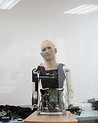 """The lab of Hanson Robotics in Hong Kong, the """" house of Sophia """" where the process of the making happens<br /> The first complex AI system to be realized on theSingularityNETwill be an AI brain forSophia Hanson— the most sophisticated humanoid robot ever built.<br /> The new version of Sophia's mind, currently under development bySingularityNETin conjunction with Hong Kong firm Hanson Robotics, will be a core node of theblockchain. Her intelligence will be plugged in the network for everyone's benefit and will also receive input and wisdom from everyone's algorithms. Sophia's mind will be constantly fed with new content fromSingularityNET, while at the same time helping to power the network with its human-like intelligence.<br /> Saudi Arabia granted the status of Citizen to Sophia, that became the first robot to be recognized as a citizen."""