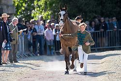 Harwood Louise, (GBR), Mr Potts<br /> CCI4* - Mitsubishi Motors Badminton Horse Trials 2016<br /> © Hippo Foto - Jon Stroud<br /> 06/05/16
