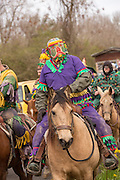 Costumed revelers ride horses in a procession during the Mamou Courir de Mardi Gras chicken run on Fat Tuesday February 17, 2015 in Mamou, Louisiana. The traditional Cajun Mardi Gras involves costumed revelers competing to catch a live chicken as they move from house to house throughout the rural community.