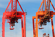 Cranes at the port of Seattle