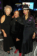 NEW YORK, NEW YORK- FEBRUARY 11: (L-R) Melvina Lathan, Dr. Deb Willis and Chenoa Maxwell attend the National CARES Mentoring Movement 'FOR THE LOVE OF OUR CHILDREN' Gala Inside held at the Zeigfeld Ballroom on February 11, 2019 in New York City.  (Photo by Terrence Jennings/terrencejennings.com)