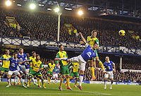 Everton's Phil Jagielka battles with Norwich City's Ryan Bennett<br /> <br /> Photo by Stephen White/CameraSport<br /> <br /> Football - Barclays Premiership - Everton v Norwich City - Saturday 11th January 2014 - Goodson Park - Liverpool<br /> <br /> © CameraSport - 43 Linden Ave. Countesthorpe. Leicester. England. LE8 5PG - Tel: +44 (0) 116 277 4147 - admin@camerasport.com - www.camerasport.com