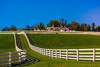 Calumet Farm (thoroughbred horse farm), Lexington, Kentucky USA.