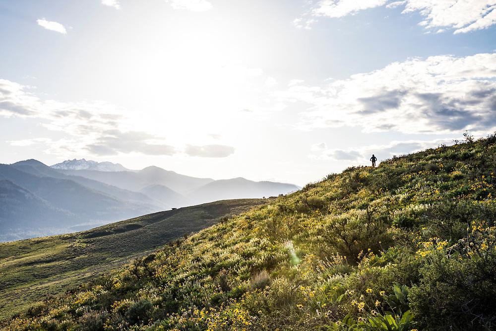A woman mountain biking up a hill outside Winthrop, Washington.