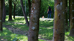 THEMENBILD - ein Frau geht mit ihrem Hund an einem sonnigen Frühlingstag spazieren, aufgenommen am 25.Mai 2016, Innsbruck, Österreich // a woman walks with her dog on a sunny spring day in Innsbruck, Austria on 2016/05/25. EXPA Pictures © 2016, PhotoCredit: EXPA/ Jakob Gruber