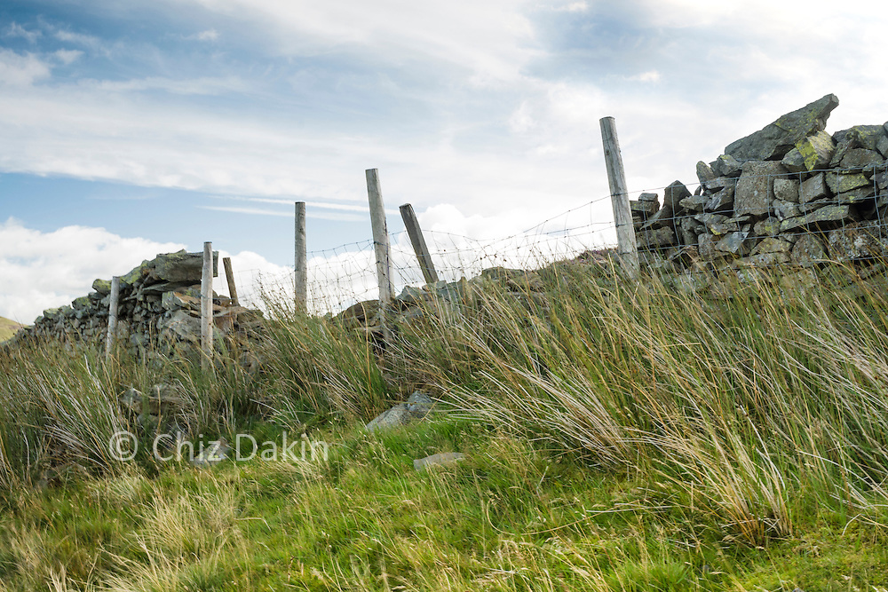 Although access land drystone walls can prevent an obstancle. Some (as here) are sufficiently derelict as walls relying on a wire fence instead - which makes crossing them viable.