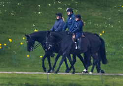 © Licensed to London News Pictures. 27/03/2021. Windsor, UK. Prince Andrew, Duke of York is seen riding at Windsor Castle. The Duke of Edinburgh has returned to WIndsor after being in St Barts and Edward VII hospitals. Photo credit: Peter Macdiarmid/LNP