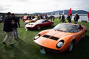 August 15, 2019:  Pebble Beach Concours, Lamborghini Miura detail