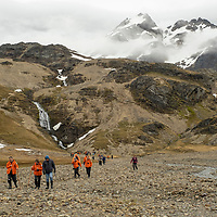 Hikers return from the Shackleton Waterfall. The Shackleton Hike leads from Fortuna Bay to Stromness on South Georgia Island.