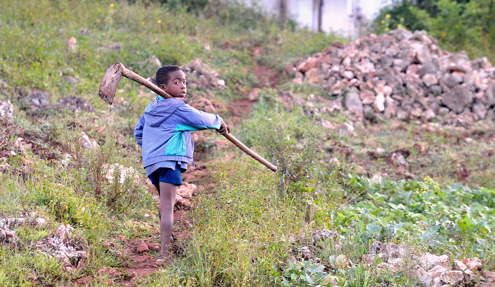 Carrying a hoe, a child walks along a path in the Haitian village of Foret des Pins.