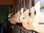 Ukulele's hanging for sale in a store in Kaua'i, Hawai'i