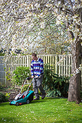 Mowing the lawn with a rechargeable lawnmower in spring