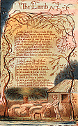 The Lamb.  A page from 'Songs of Innocence' (1879) by William Blake (1757-1827), English mystic, poet, painter and engraver.