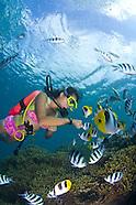 Guam Piti Reserve Diving