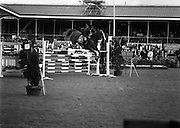 "08/08/1987<br /> 08/08/1987<br /> 08 August 1987<br /> RDS Horse Show, Ballsbridge, Dublin. The Irish Trophy - Grand Prix of Ireland. Harvey Smith (Great Britain) on ""Sanyo Shining Example""."