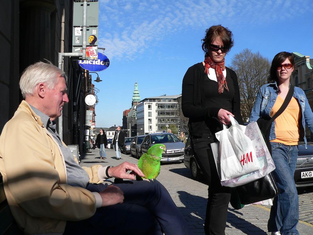 Mannen med en grön papegoja på Hornsgatspuckeln, Mariaberget, i Stockholm.