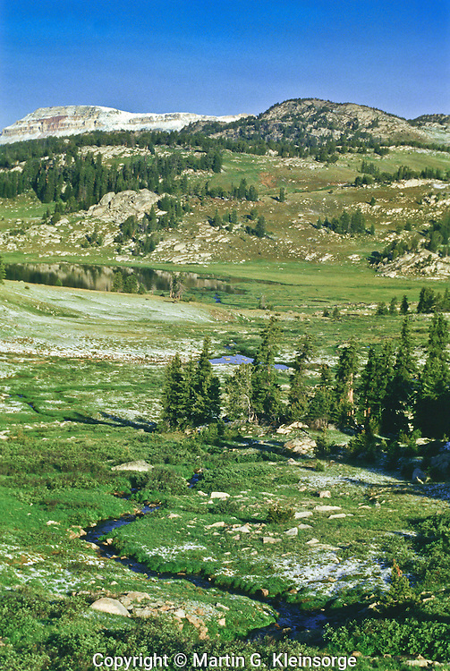 Fresh snow on the alpine tundra after a July snowstorm.  Beartooth Plateau of the Beartooth Mountains.  Wyoming.