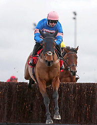 Cyrname ridden by Sean Bowen wins the 32Red.com Wayward Lad Novices' Steeple Chase during day two of the 32Red Winter Festival at Kempton Park, Sunbury on Thames.