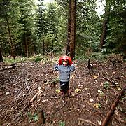 Forest Kindergarden