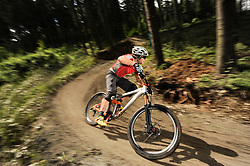 Mountainbiker speeding in forest, Bavaria, Germany