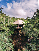 Tent #2 in the jungle