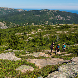 Hikers on Sargent Mountain in Maine's Acadia National Park.