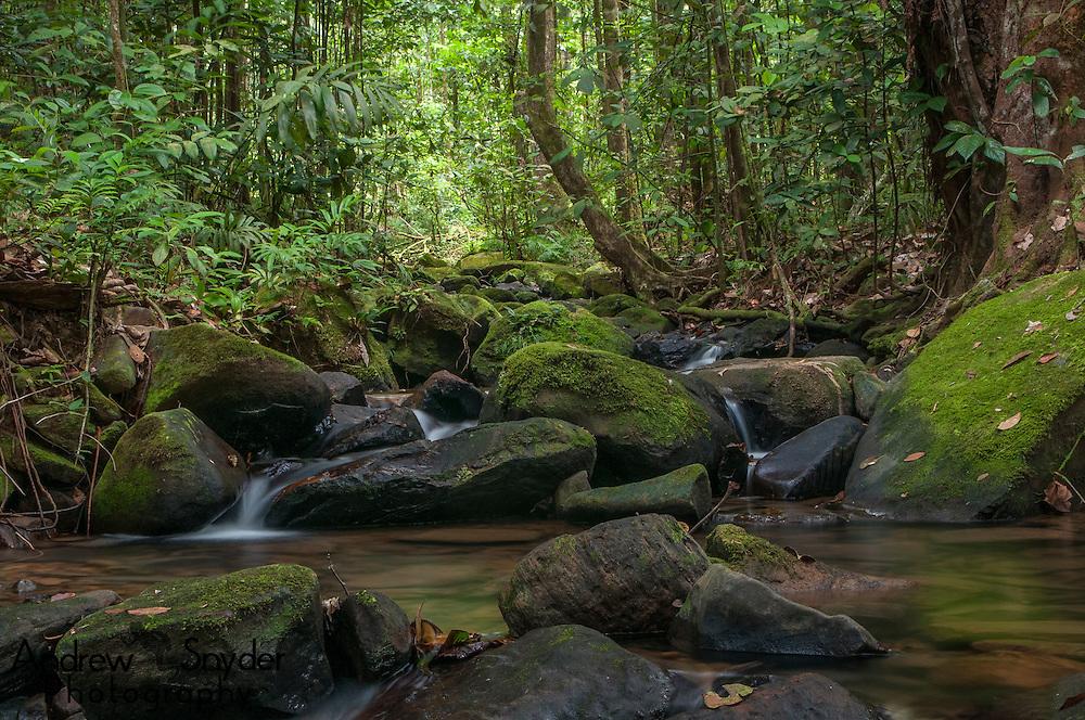 A creek feeding into the Potaro River, Guyana.