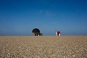 "Families admire Scallop, a 4 metre high steel sculpture of two interlocking scallop shells on Aldeburgh beach dedicated to Benjamin Britten. Hambling's Scallop (2003) stands on the north end of Aldeburgh beach. It is a tribute to Benjamin Britten and is pierced with the words ""I hear those voices that will not be drowned"" from his opera Peter Grimes. Aldeburgh is a coastal town in Suffolk, East Anglia, England. Located on the River Alde, the town is notable for its internationally renowned Aldeburgh Festival of arts, which takes place at nearby Snape Maltings, was created in 1948 by the resident and acclaimed composer Benjamin Britten. The Blue Flag shingle beach and fisherman huts is where freshly caught fish are sold daily."