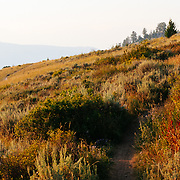 Heather Goodrich rides local Singletrack near Jackson, Wyoming while the sunsets through wildfire smoke.