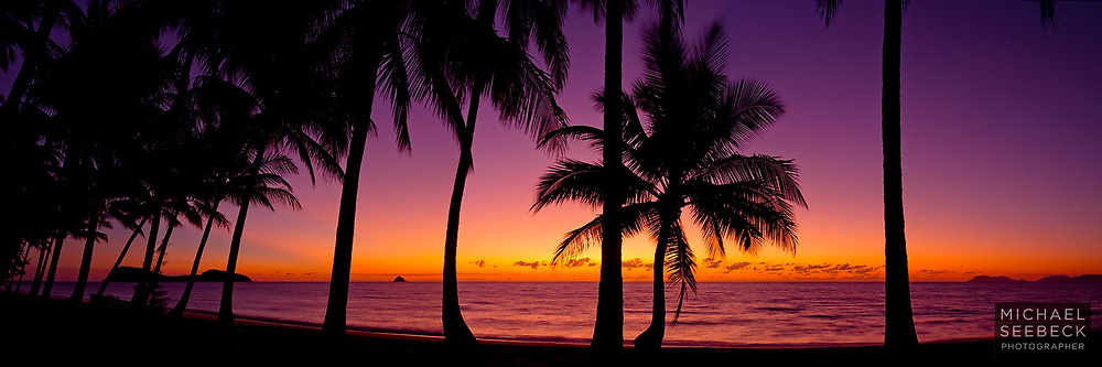 A panoramic photograph of the coconut palms and Double Island, taken at dawn, from Palm Cove.<br /> <br /> Code: HAQT0060<br /> <br /> Limited Edition Print