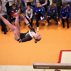 GYM: Idrætsgymnastik - Hold-DM 2017 - Aarhus