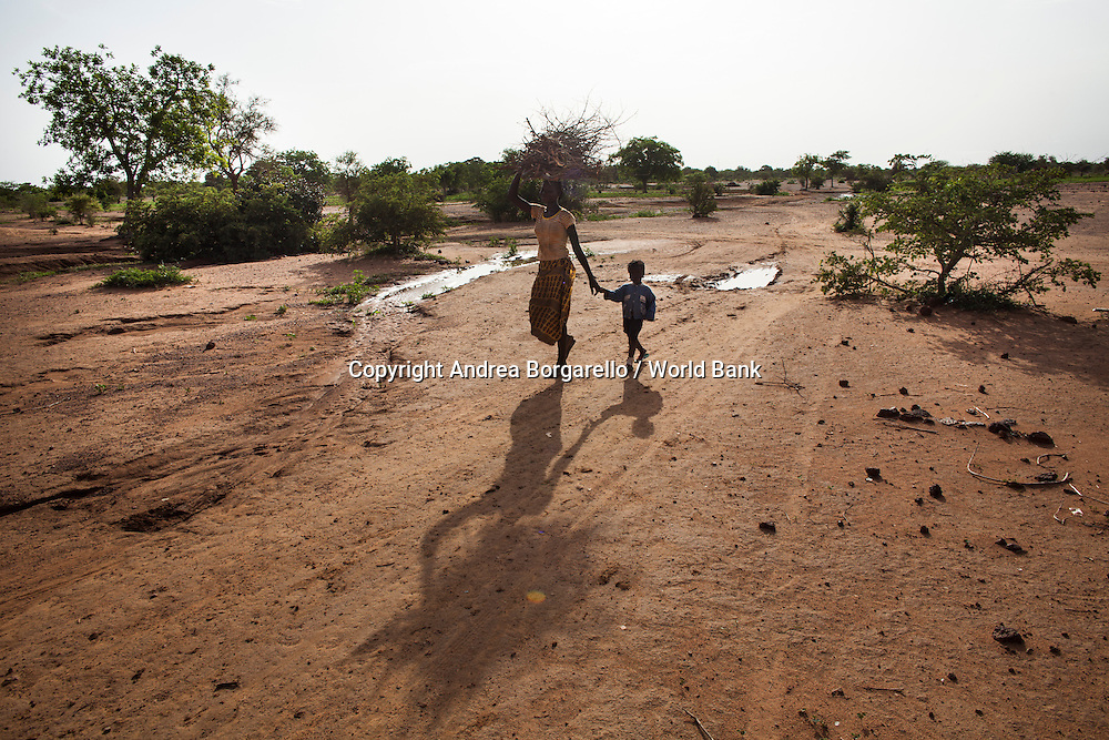 Burkina Faso, North. A woman collects wood for cooking. Wood is still the dominant source of fuel for cooking, heating and lighting in the Sahel.