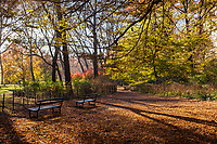 A quiet spot along the West Side Bridle Path near 77th Street in Central Park