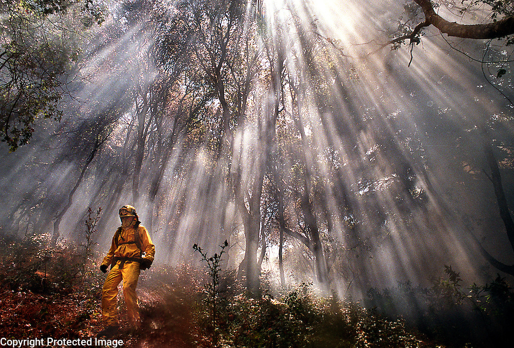 Sunlight streaming through the smoke of a wildland fire creates a dramatic backdrop as a CDF firefighter searches for hot spots.<br /> Photo by Shmuel Thaler <br /> shmuel_thaler@yahoo.com www.shmuelthaler.com