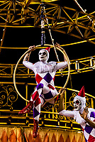 """Acrobats on a float in the Carnaval parade of Academicos do Salgueiro samba school in the Sambadrome, Rio de Janeiro, Brazil.               <br /> <br /> The theme of their parade is """"The Black King of the Riding Arena"""". It is a tribute to Benjamin de Oliveira, the first black clown in Brazil."""