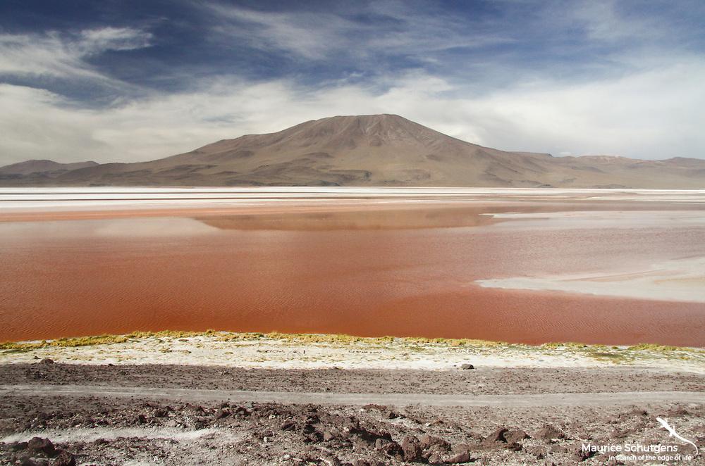 Stunning lagunas in the high altitude desert of Eduardo Avaroa National Park, Chile.