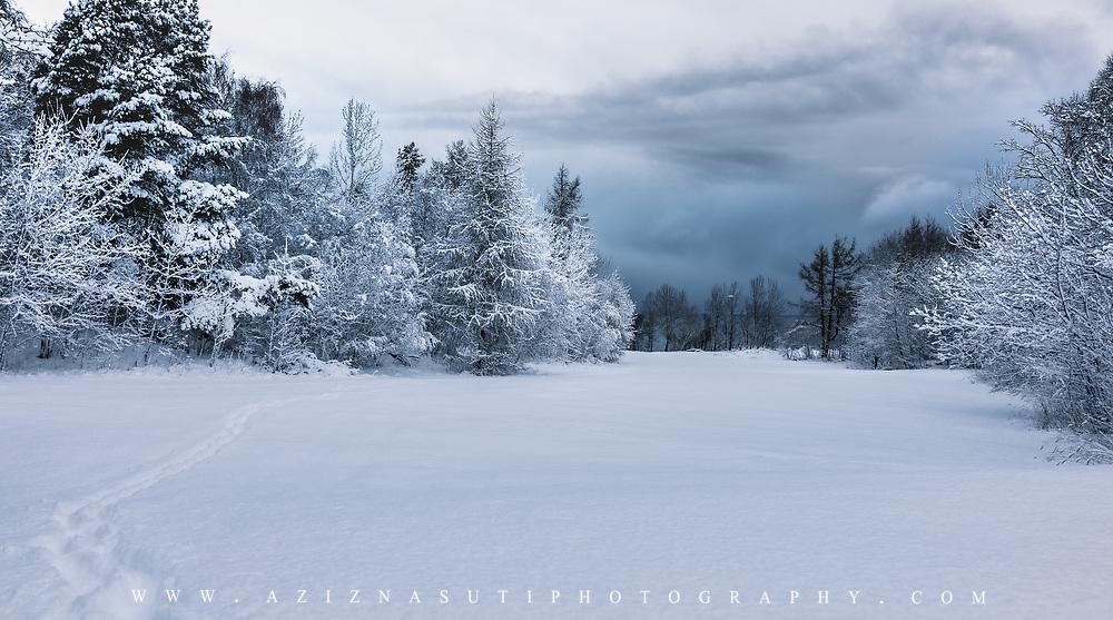 www.aziznasutiphotography.com                                          Picture has been taken in between NGU and Ladekaia in Trondheim.
