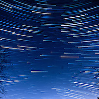 South View Star Trails. Late Autumn Night in New Jersey. Image taken with a Nikon D3x and 14-24 f/2.8 lens (ISO 400, 14 mm, f/5.6, 60 sec). Composite of 60 images combined using the Startrails program.