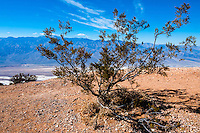 United States, California, Death Valley. From Dante's View 5,500 feet (1,700 m) above sea level. Great view of central part of Death Valley.