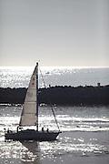 Sailing in Newport Beach Harbor