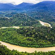 Tampur Dam, Leuser Ecosystem, Sumatra, Indonesia. Photo : Paul Hilton / Earth Tree Images