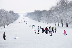 © under license to London News Pictures.  18/12/2010 Tourists and locals make the most of the snow at the Long Walk in the grounds of Windsor Great Park.  Picture credit should read Ed Brown/London News Pictures