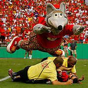 Kansas City Chiefs mascot KC Wolf helped out security guards by diving on a fan that ran out onto the field during the game against the Minnesota Vikings on September 23, 2007, at the Chiefs home opener at Arrowhead Stadium. The fan was arrested and the Chiefs won 13-10 for their first victory of the season.