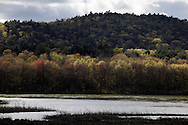 Mamakating, New York - Sunlight and shadows moves across the trees and water in the Bashakill Wildlife Management Area  on April 17, 2010.