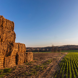 A hay field in spring in Franklin Township, Pennsylvania.